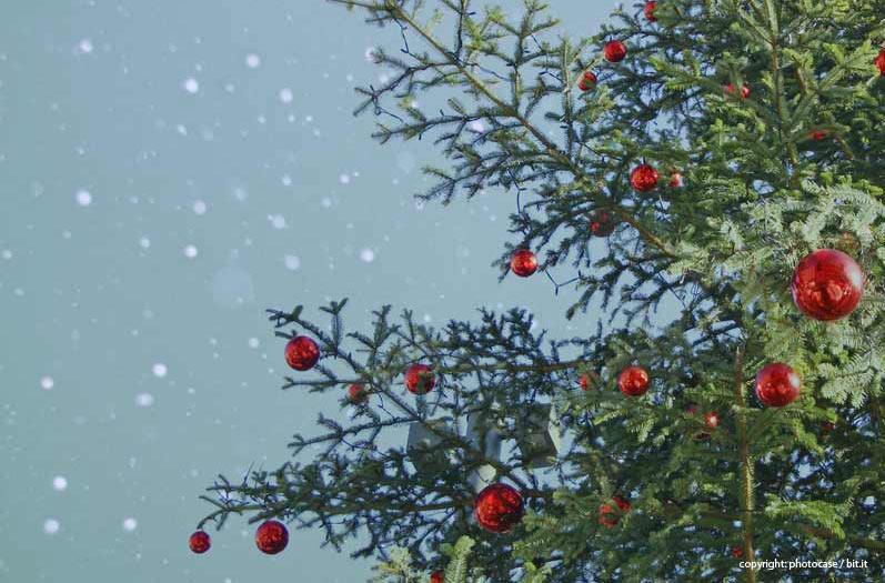 weihnachtsenn